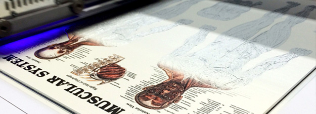 УФ печать на пенокартоне